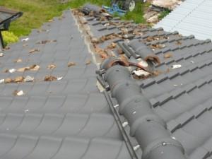 屋根の養生1